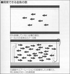金魚を少なめに飼う図1